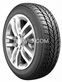 195/55R16 87H FROST WH01 RoadX
